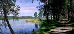 Teich in der Nähe - zufuß paar Minuten