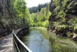 Rieger Wanderweg