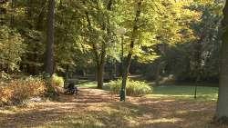 Park in der Nähe