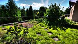 Wellness Villa JOSKA - Dachgarten